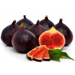 Royal Black grekiska fikonfrön