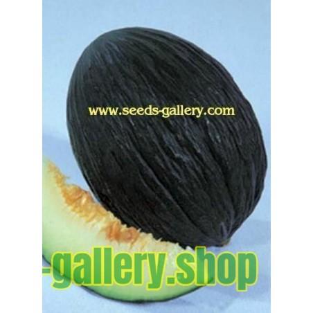 Armenische Tiger Melone BIO Samen