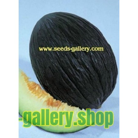 Svart Melon frön