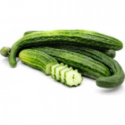 Super Long Cucumber Suyo Long seeds