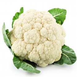 Cauliflower Seeds SNOWBALL
