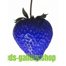 African Blue Strawberries Seeds