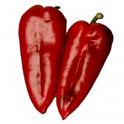 Red Horn Pepper Seeds...