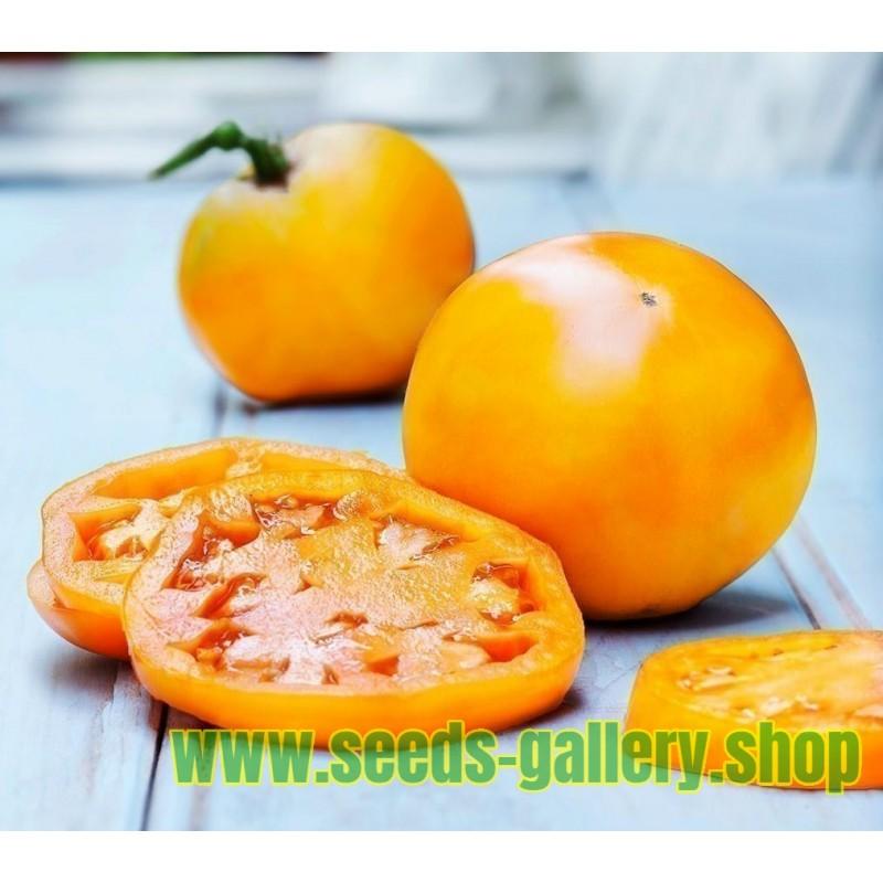 Red Pear Tomate Samen