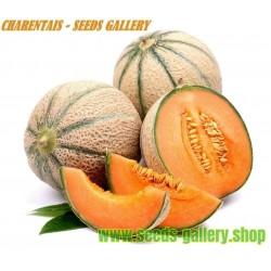 Charentais Cantaloupemelon Frön