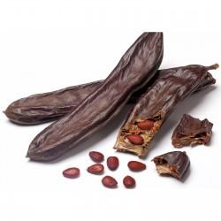 Carob - St John's-bread seeds 1.95 - 1