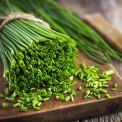 Schnittlauch Samen (Allium...