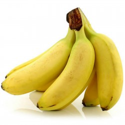 Sementes de Bananeira Musa...