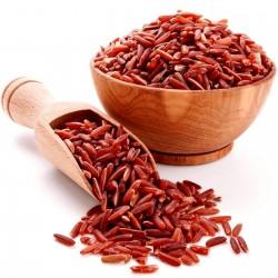 Rakthashali röda risfrön