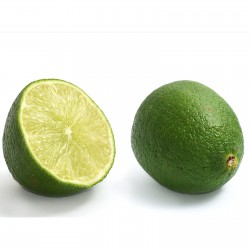 Echte Limette Samen (Citrus...