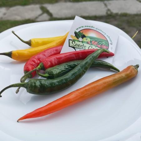 Sementes de Pimenta Cayenne (Cores Mistas)