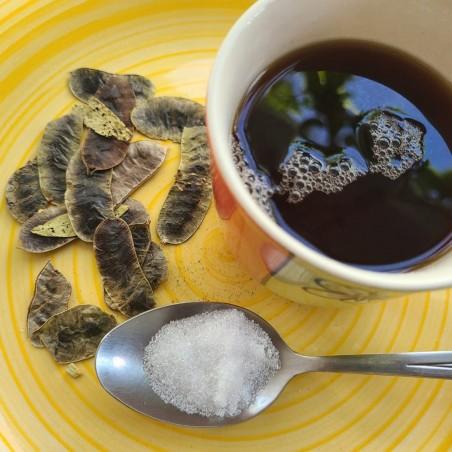 Semințe de seceră senna (Cassia tora)