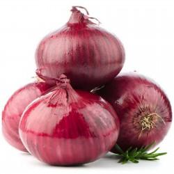 Sementes de cebola roxa...
