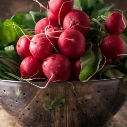 Σπόροι από ραπανάκι NON...