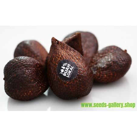 Sementes De Marmelo-japonês