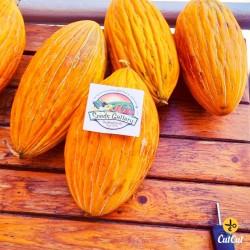 ARGITIKO grekiska melon frön