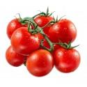 Σπόροι Ντομάτα Red Cherry
