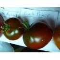 Tomatfrön Gul Pear