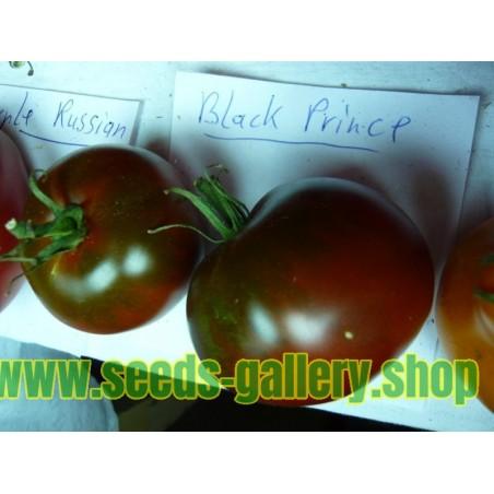 Black Prince Tomate Samen