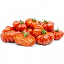 Tomatfrön Costoluto Genovese