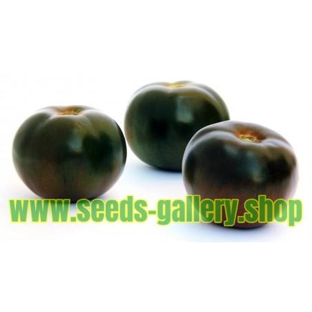 Graines Tomate ancienne noire 'Black Prince'
