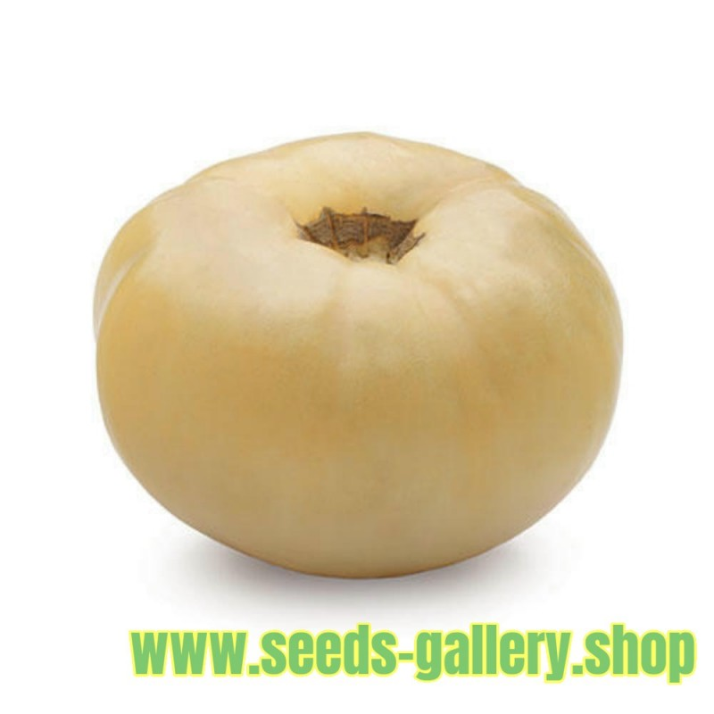 Tomato Seeds White Wonder Great Taste Heirloom