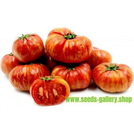 Semillas De Tomate Tigerella