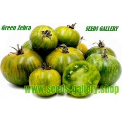 Paradajz Seme Green Zebra