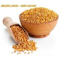 Chinese Mustard Seeds