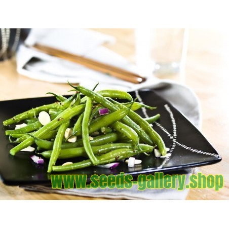 Climbing Green Bean 'Fasold' Seeds
