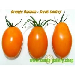 Semillas de Tomate Naranja Plátano