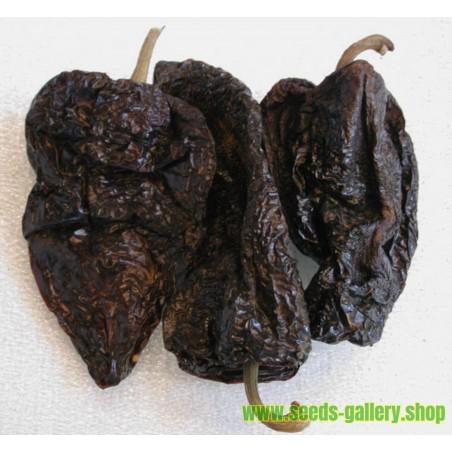 Σπόροι Τσίλι - πιπέρι ANCHO MULATO POBLANO
