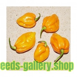 Big Sun Habanero Seeds - Yellow Sun