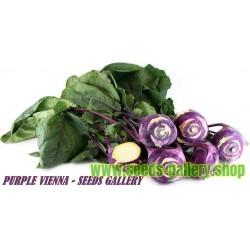 """Kohlrabi Seeds """"Purple Vienna"""""""