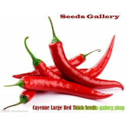 Graines de Piments Cayenne Large Thick