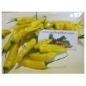 Chili Lemon Drop Seed (Capsicum baccatum)