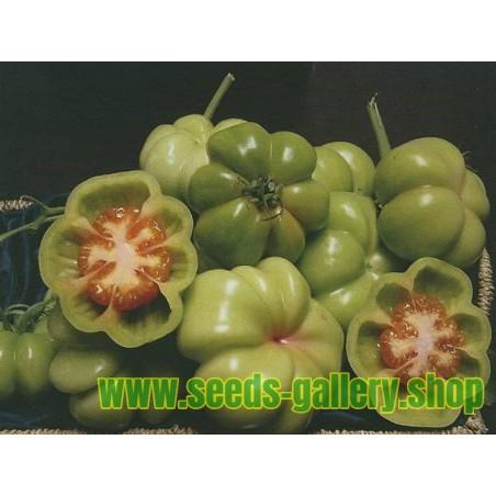 Graines de Tomate Montserrat