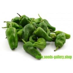 Σπόροι Τσίλι - πιπέρι Del Padron