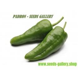 Chili Frön Del Padron (Capsicum Annuum)