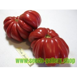 Pink Accordion Tomato Seeds