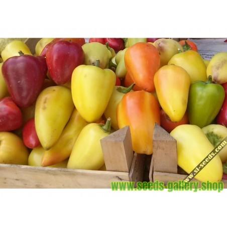 Καυτερή πιπεριά σπόρους SOMBORKA