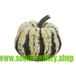 "Winter Squash Seeds Cucurbita pepo 'Sweet Dumpling"""