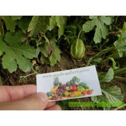 Bitter Melon Seeds (Momordica Charantia)