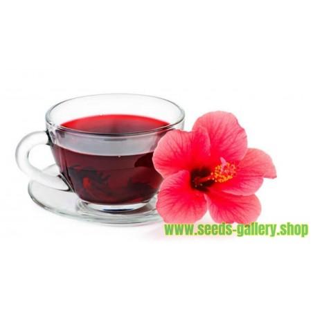 Roselle Seme - Lepa, ukusna i zdrava biljka
