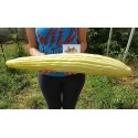 Armenian Yard Long Cucumber Seeds