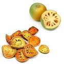 Squash Pumpkin - BABY BOO seeds