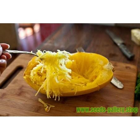 Graines Courge 'Spaghetti'