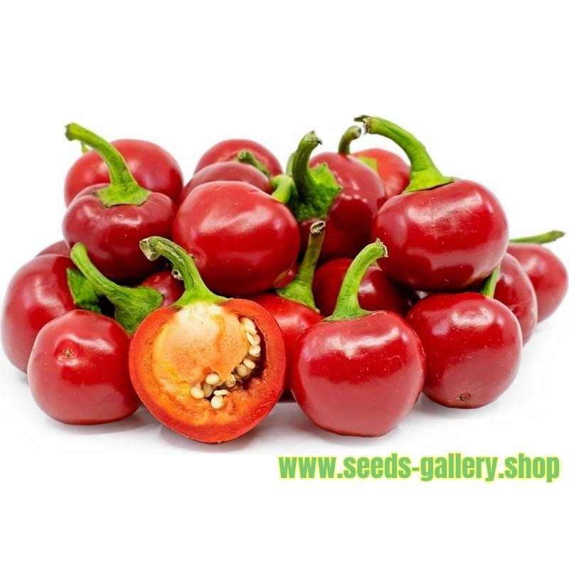 Graines de Piments Large Red Cherry
