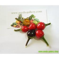 Chili Seme Thai Hot Culinary