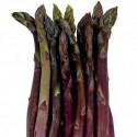 Sementes De Asparagus ARGENTEUIL